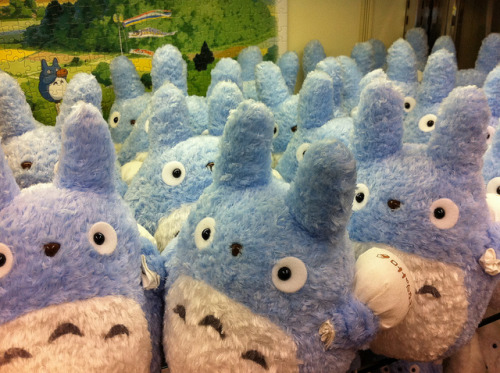 japanlove:  Chuu-Totoro by eerkmans on Flickr.