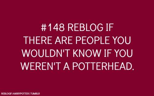 reblogif-harrypotter:  I personally made the experience that Harry Potter is an excellent topic to start conversations and I got to know many new and lovely people because of it. How about you?