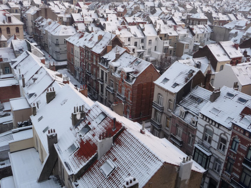 Rooftops of Brussels - Belgium (by seikinsou)