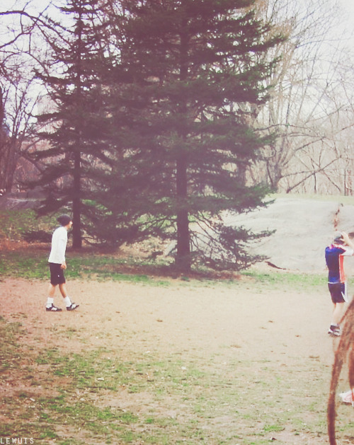 harry and louis in central park