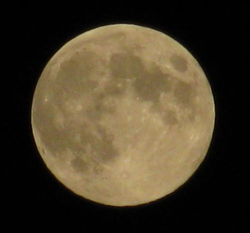 christopherasmith58102:  Harvest Moon 9/29/2012