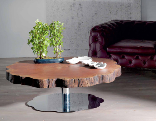 treeporn:  Anyone got a spare £2,500? (sequoia coffee table by giorgio cattelan)
