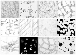 archidose:  deterritorialization:  Denis Wood, Everything Sings: Maps for a Narrative Atlas
