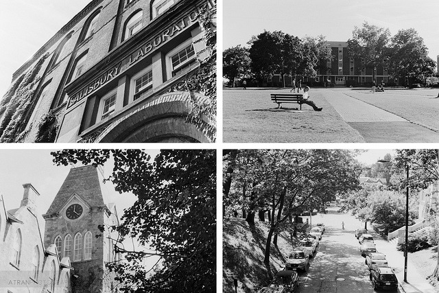 Campus in Black & White on Flickr.Via Flickr: Shots around campus in film. I learned how to develop this film myself! Minolta Hi-Matic 7SII Kodak Tri-X 400TX