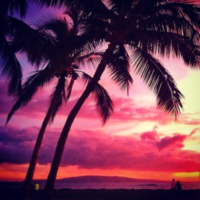 ishawaii:  Tropical Evening — photo taken by turbovenus