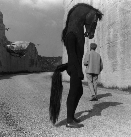 blackandwtf:  1960 This horseman is from the 1960 Jean Cocteau film Testament of Orpheus.  (via submission)