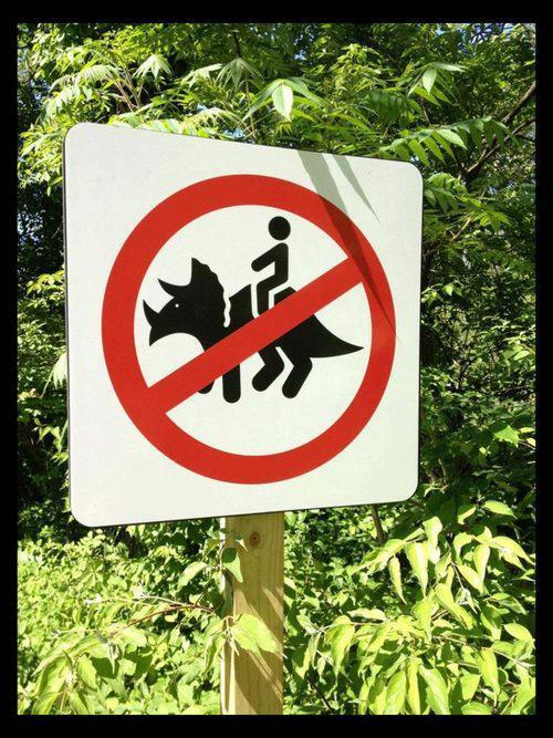 gdfalksen:  Not allowed to ride my dinosaur…. Well, there goes my Sunday night….