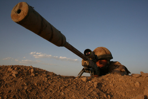 militaryandweapons:  British army sniper in Helmand by jeromestarkey on Flickr.
