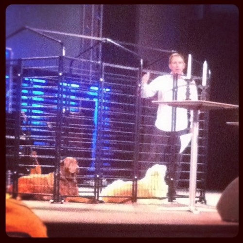Pastor Dave preaching this morning in a  confined cage with his dogs. The whole time I wanted to go up and pet them!!  (Taken with Instagram)