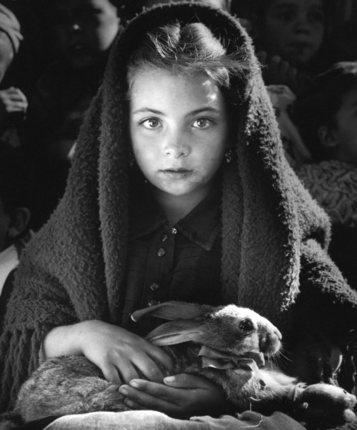 semioticapocalypse:  Little girl wih a rabbit, Portugal, 1953 by Jean Dieuzaide