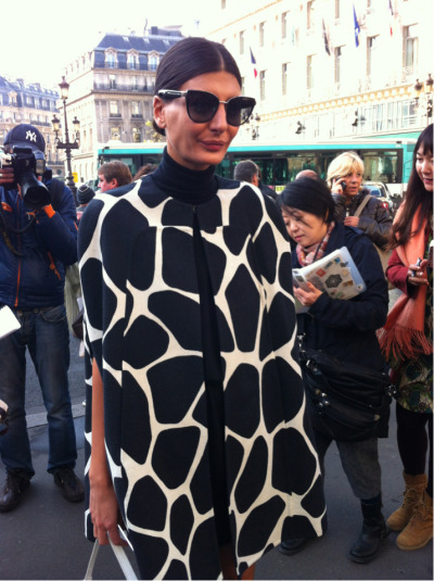 Safari, so good! @bat_gio remasters the classics in graphic giraffe. #PFW
