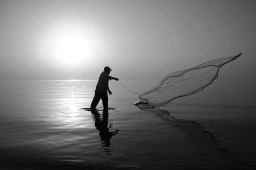 A Trip Through My Eyes: Weekend Fishing A man on the Arabian Gulf (Al Khobar, Saudi Arabia) throwing his net to trap the fish that were feasting on the bait he first threw. He was using khubz (kuboos, the Arabian flat bread) as his bait. Watched him do this for some minutes but he wasn't that successful. He transferred place and inshallah, hopefully, managed to catch some.  Others use fishing rods (mostly Filipino expats), but the use of nets are notable from locals and other folks such as Pakistanis and Bengalis, among others. Some even make use of the sarong as an improvised net.