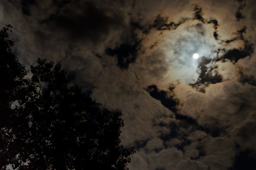 Harvest Moon 2012 by Truebritgal on Flickr.