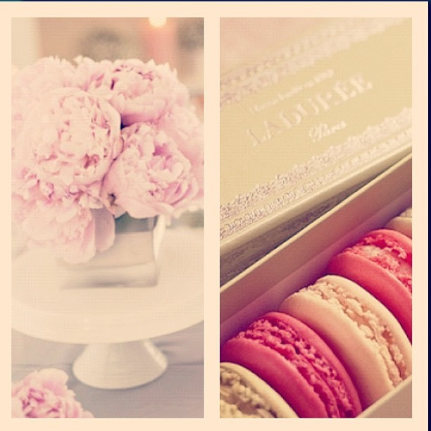 #ladureemacaroons & #peonies and ill love you forever. 💕 (Taken with Instagram)