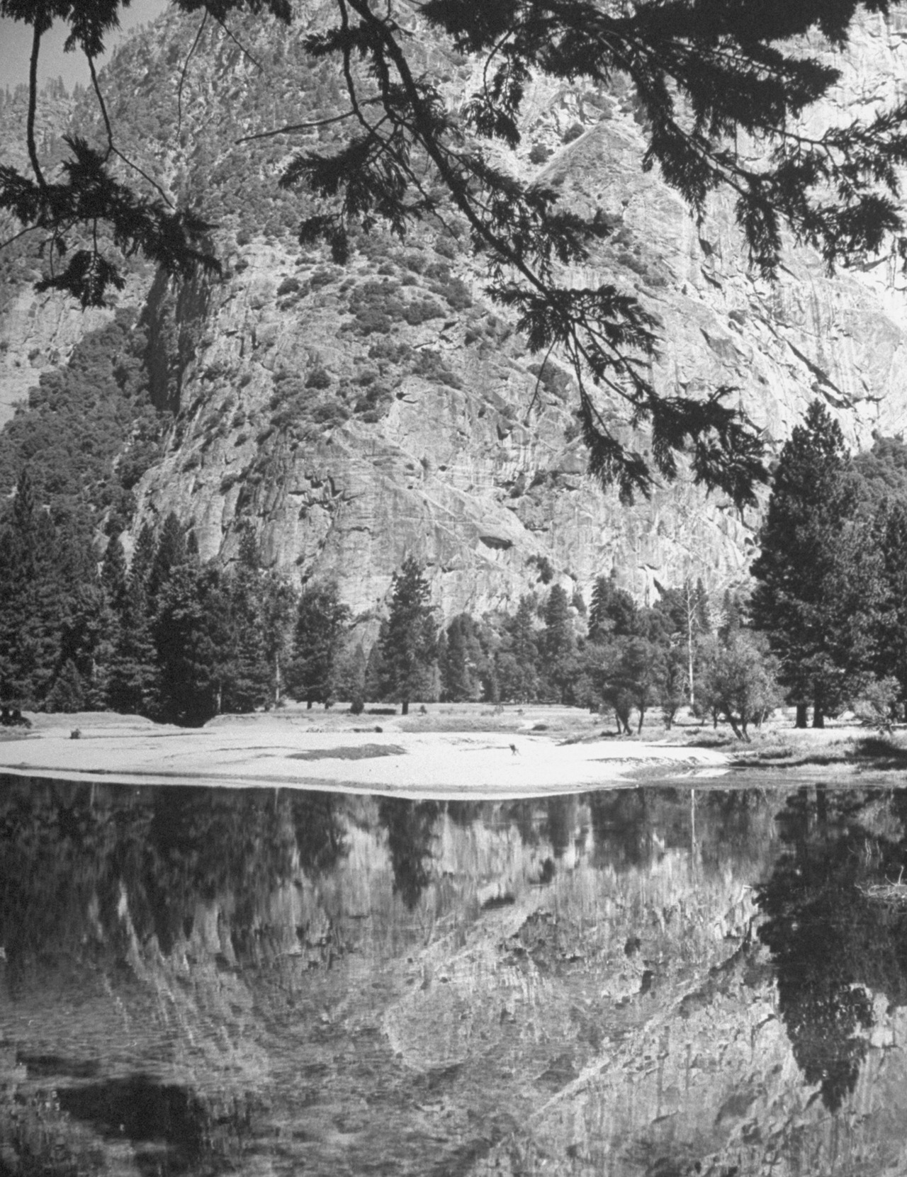 life:  On this day in 1890, Yosemite National Park was established. Pictured, a mountain reflecting off a stream in Yosemite National park by LIFE's Nina Leen.  Don't forget the MORE PARKS poster is still available in the STORE.