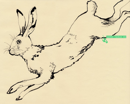 A drawing of an escaping hare that I did last term in class. I loved to play around with ink and the pipet of the ink glass. The paper is actually pastel chalk paper but to my suprise it worked fine with the ink.
