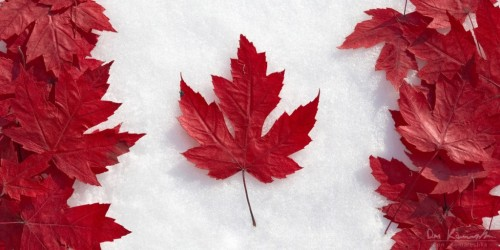 How the Canadian flag came to be