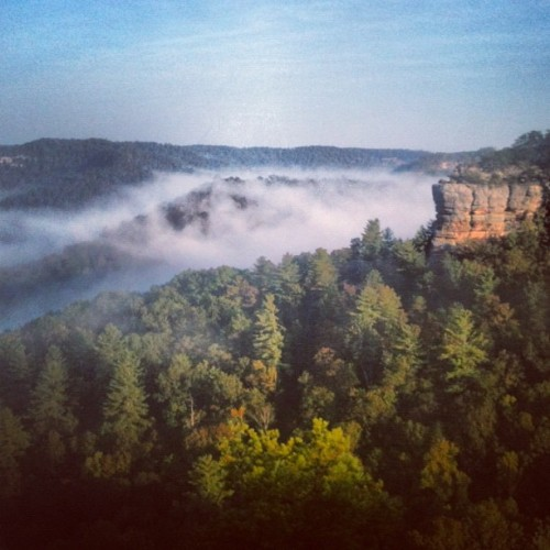 red river gorge - about to go on an epic camping trip with my boyfriend here :)