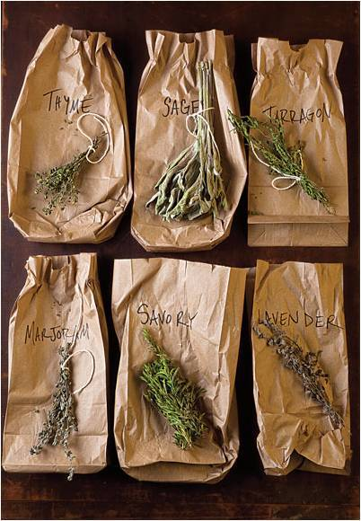 anthropologie:  Fresh herbs for well-seasoned food. Via: Modern Girls & Old-Fashioned Men