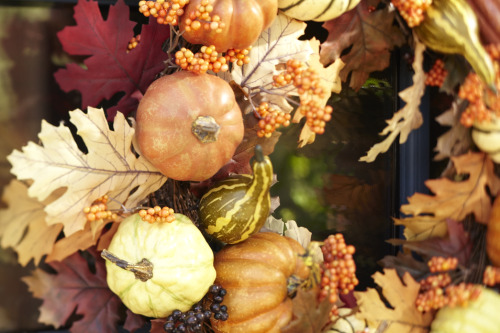 potterybarn:  Pretty pumpkins and autumn leaves