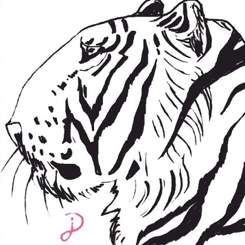 "Haven't post my drawing about a month. Here is fast draw ""Tiger"" attempt for @d87dunn #drawsomething #teamdli #iparindhidadraws #iparindhida #drawsomethingdesigns @drawsomethingdesigns #drawsomethingepic #fyoupicasso #sketch #arts #awesomedrawsome #drawsomethingartists #tigerds #animal #handdrawnart  (Taken with Instagram)"