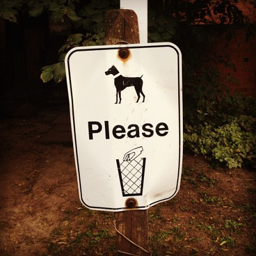 Dogs, please put severed hands in trash. (Taken with Instagram)