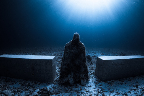 One of several photos of Jason deCaires Taylor's underwater sculpture Silent Evolution.