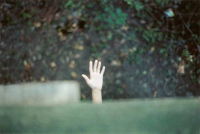 fort by jasmine raena on Flickr.