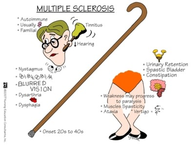 msproblems:  lulabelleismyshihtzu:  Multiple Sclerosis  Some symptoms and FAQ about MS