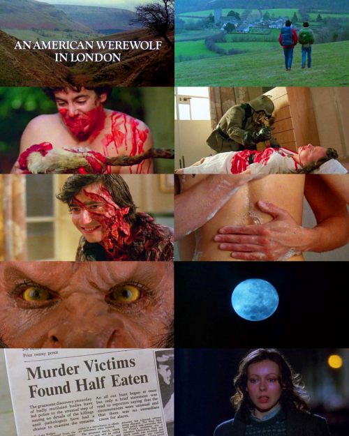 "An American Werewolf in London (1981)""Beware the moon, David."""