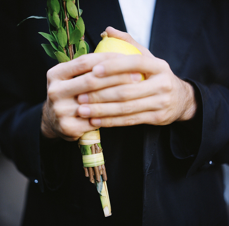 "trentgilliss:  Chag Sameach, y'all. This photo of the lulav and etrog from Matthew Septimus' ""Greetings from Zucotti Park"" series remains with me to this day. During his preparations for Sukkot, the young, observant Jew stopped down to show his solidarity for the Occupy Wall Street in October 2011 and had such a happy, ."