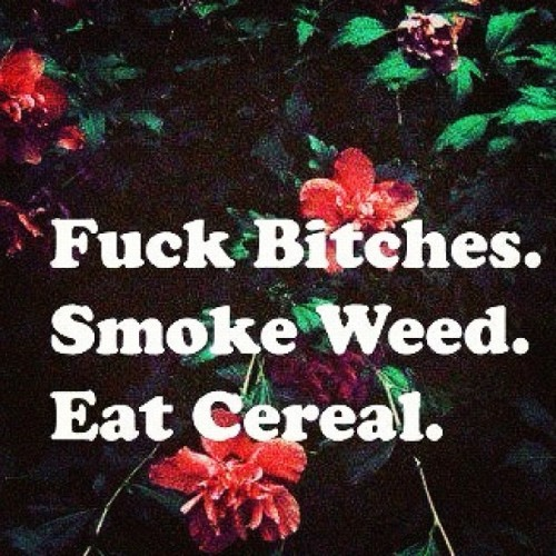 Life. #fuckbitches #smokeweed #eatcereal #swag #dope (Taken with Instagram)