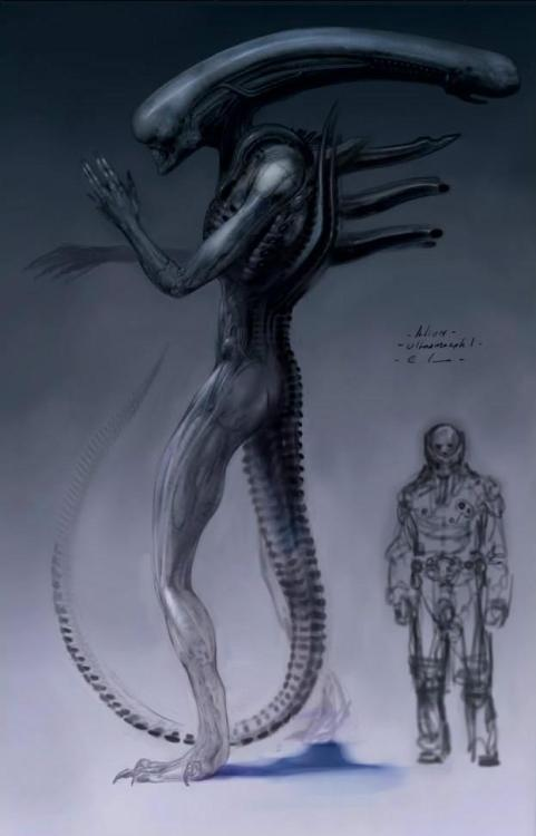 "kinovore:  redskullsmadhouse:  Unused Prometheus concept art  2  The preliminary design of the ""Ultramorph"" - which later became the Deacon - from the Spaihts prequel draft of what later became Prometheus.  Originally the story, which was set on LV-426 in Spaihts' draft, ended with a battle between Elizabeth Shaw (then named Elizabeth Watts) and this giant beast - the ""ultramorph"" which emerged from the dead Engineer/space jockey's chest (in the Spaihts draft, the juggernaut crash and dead Engineer were the very same derelict and pilot from Alien). Personally, I think it looks too much like what we're used to from the past.  This is cool in that it calls up Giger's older work"