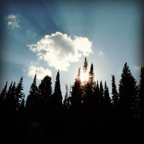 #cloud #clouds #blue #sky #skyline #tree #trees #forest #shadow #sun #bright #fall #autumn #outdoors #nature  (Taken with Instagram)