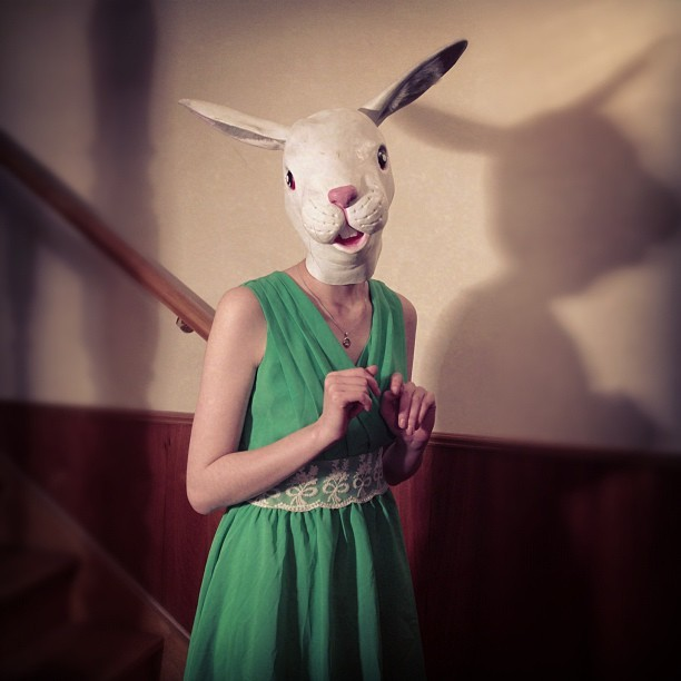 Apparently, #bunnies can be #scary. Haha. fun #photoshoot :p #wtf #bunny #rabbit #nightmarefuel #model  (Taken with Instagram)