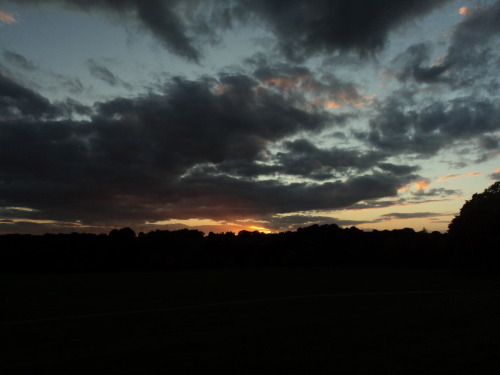sunset at Wollaton Park