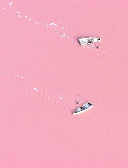 Natural wonder pastel pink lake Retba, Senegal.