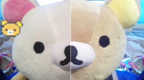 azunyannakano:  Things I bought at the Royal Show - Rilakkuma and Korilakkuma plushies!