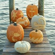 Nautical pumpkins