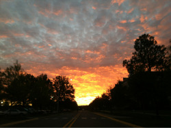 Sunrise in Russellville, AR at 7 AM this morning (10/02/12). Gorgeous.