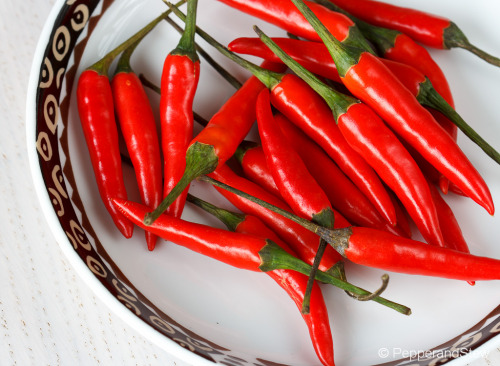 African Cooking 101 - African Birds Eye Chili also known as Piri Piri, Pili Pili or Piri Piri, this set is from Kenya and is for the hot pepper lovers!