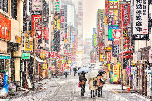 Kabukicho Snow by tokyofashion