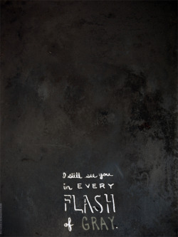 """I still see you in every flash of gray."""