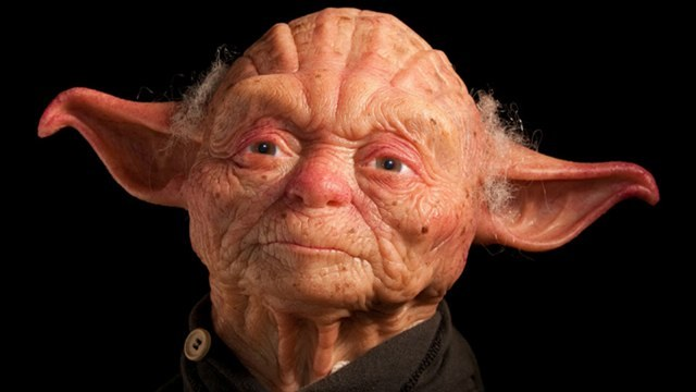 kqedscience: This is what Yoda would like as a human being.