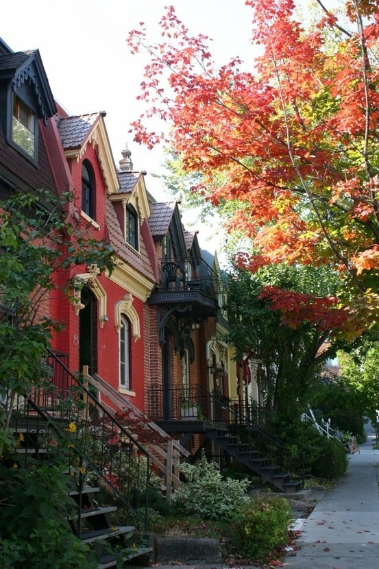 letsmakelifehappen:  This makes me think of Georgetown. I miss DC :(    It does look like Georgetown!  It's beautiful there, especially those skinny little streets hidden away a block or so from all the busyness. Leaves skipping along the ground in front of Halloween breeze.
