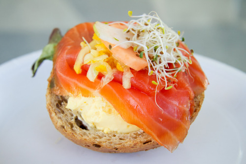 open-faced smoked salmon & egg sandwich with mixed greens & sprouts photo by roboppy