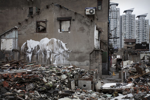 Por faith47. en Shanghai, China.