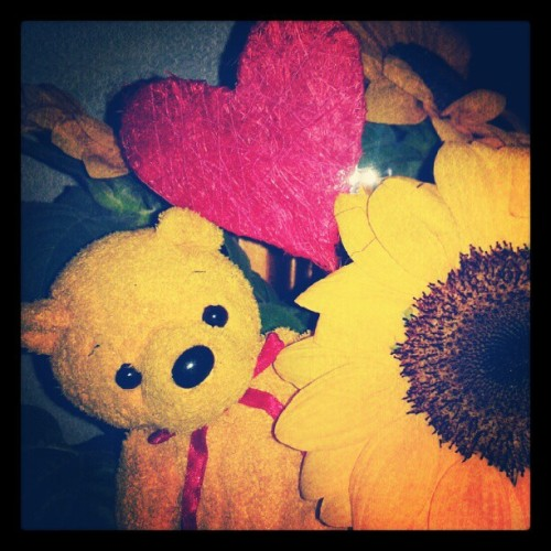 #sunflower #heart #love #yellow #red #poopsie #girasole #cuore  (Scattata con Instagram)