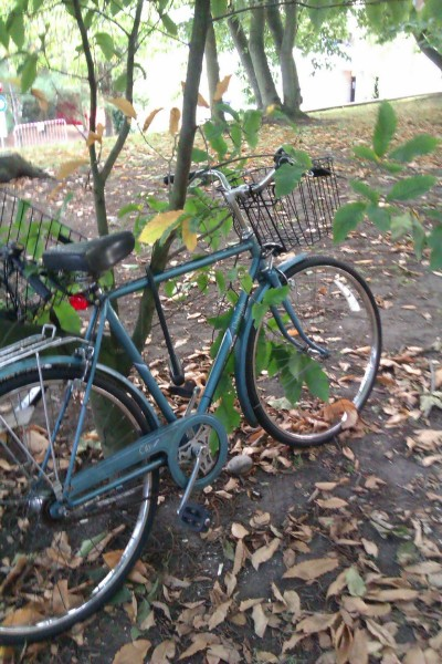 I have a bicycle now! It is bicycle-like, and it has a little basket and I put on the lights myself because I'm awesome like that. I zoomed around for like, two hours and figured out where everything wasn't(if you go too far straight from UEA, past the tiny Tescos, you end up at a church/hospice. No pubs, no shops. That's pretty much it. Need to try the other directions next) but I'm still in a residual-good-mood, which is nice. I'm gonna go meet bonnef and go to the postgrad pub quiz in about 30 minutes, and it should be good! Not a bad way to spend my last day of being 21.