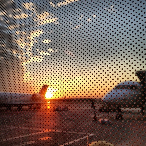 Waiting for the last flight. ~ #MobiTog #Instagram #iPhoneography #TeamRebel #RebelsUnitedWorldwide #ink361 #instagramhub #clubsocial #greatfeeds #beckognition #sunset #DTW (Taken with Instagram at Detroit Metropolitan Wayne County Airport (DTW))